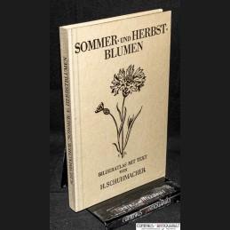 Schuhmacher .:. Sommer- und...